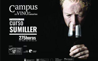 El Campus del Vino de Canarias retoma las actividades formativas de la III Promoción del Curso de Sumiller